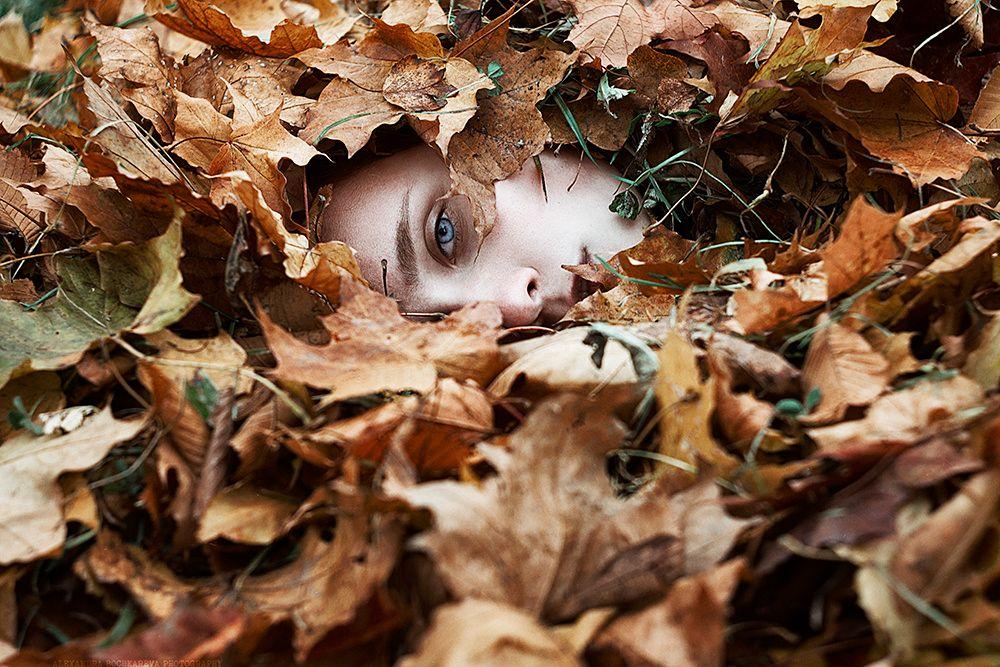 stock photo 178846119 - autumn photos