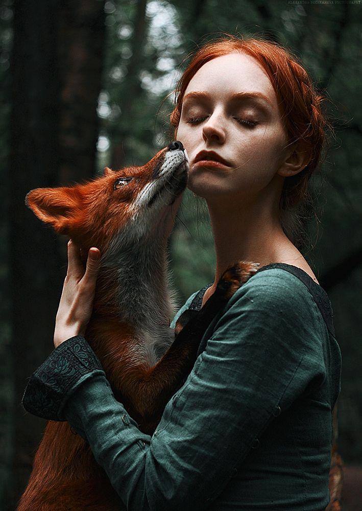 stock photo 180335001 - foxes